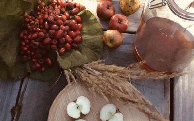 Sauerhonig (Oxymel) aus Wildfrüchten