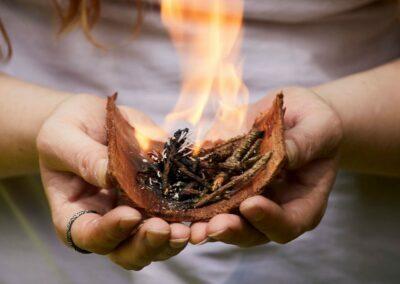 GruenKraft_Gerda Holzmann_Lebensenergie_Feuer